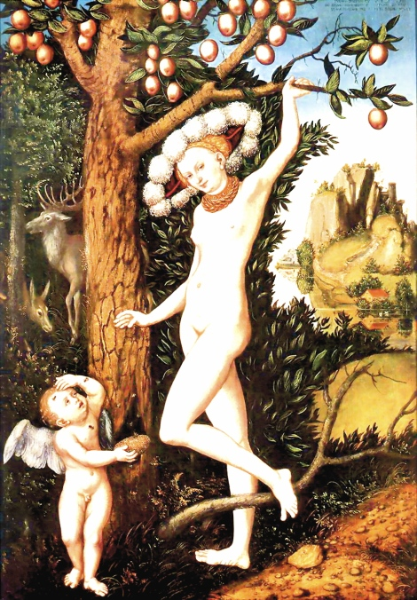 cupid complaining to venus he is stung while retrieving honey comb by lucas cranach the elder